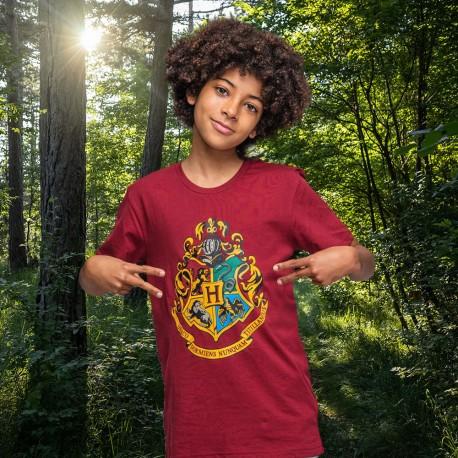 Pack de 6 Pyjamas Harry Potter Poudlard Enfants